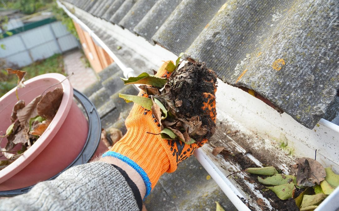 clean your gutters by hand is an option